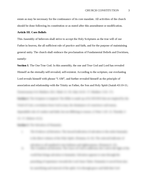 Church Constitution - Page 3