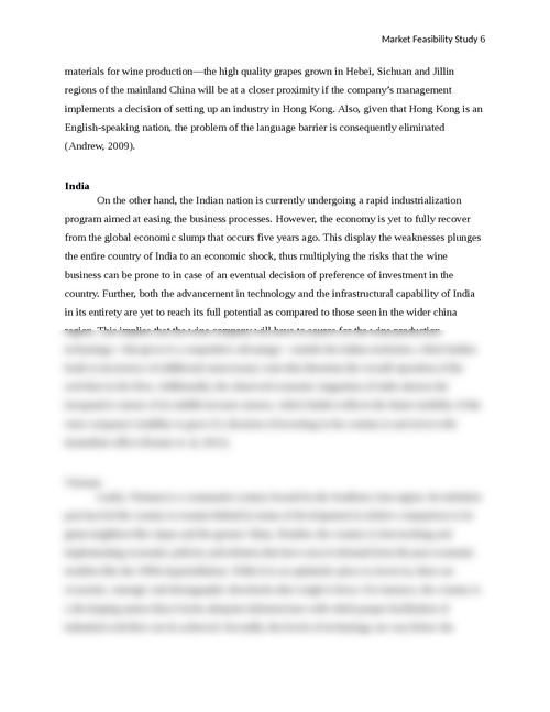 A Market Feasibility Study of South China, India and Vietnam - Page 6