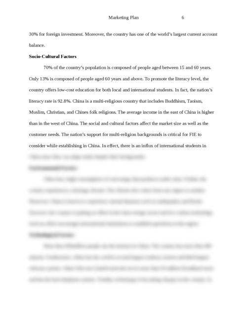 The strategic global marketing plan - Page 6