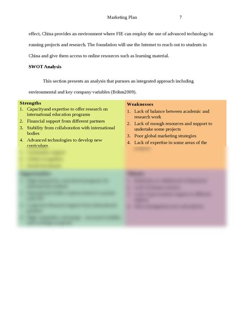 The strategic global marketing plan - Page 7