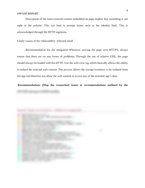 OWASP report - Page 6