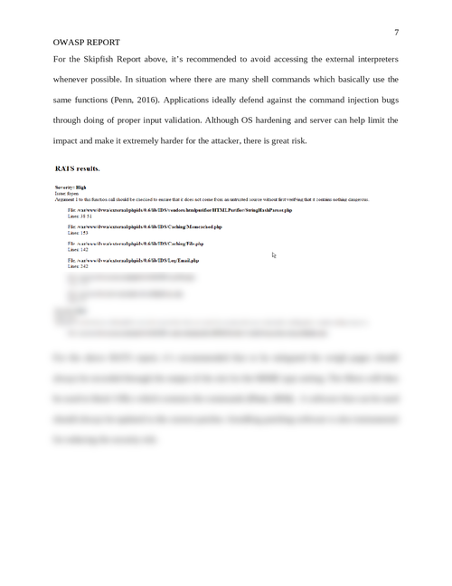 OWASP report - Page 7