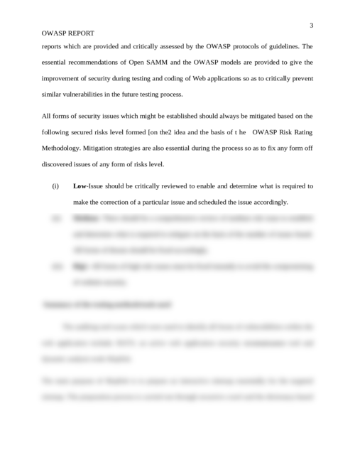 OWASP report - Page 3